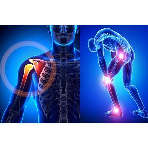 Orthopedic & Rehabilitation